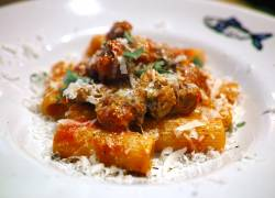 Rigatoni in Spaghetti Sauce